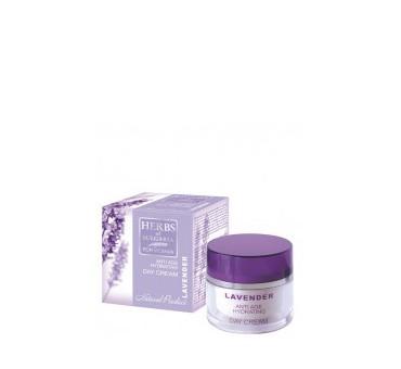 http://www.pharmamarket.ru/143-169-thickbox/herbs-of-bulgaria-lavender-krem-dlya-lica-dnevnoy-omolazhivayushiy-50ml.jpg